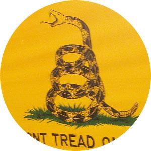 gadsden-flag-main